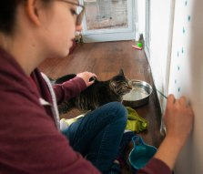 "Lydia Volpe, a sophomore animation major, pets one of the cats as she paints paw prints on a door in the cat house on April 13 at ARF. Volpe began coming to ARF to pet cats, ""At the end of the day, all the cats want is to be petted; and who am I to deny them that."" Breanna Daugherty 